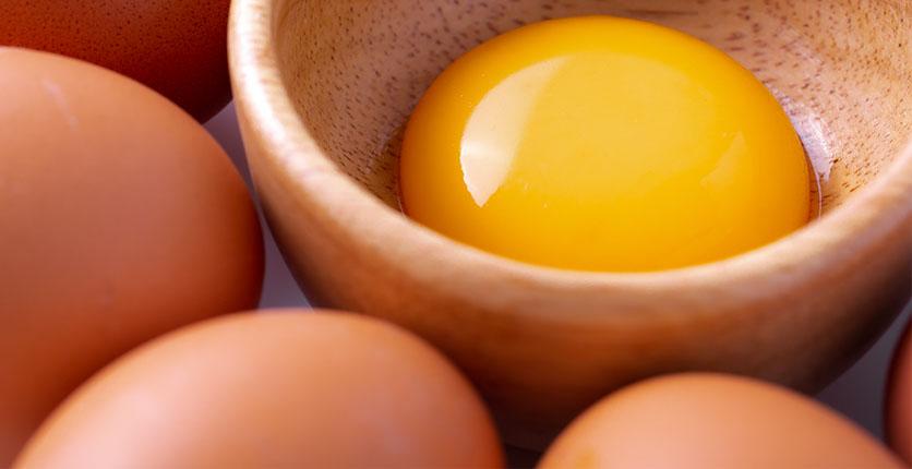 Vitamin B7 egg yolk