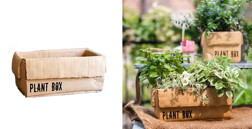Noah Garden Centre Garden Plant Box 2