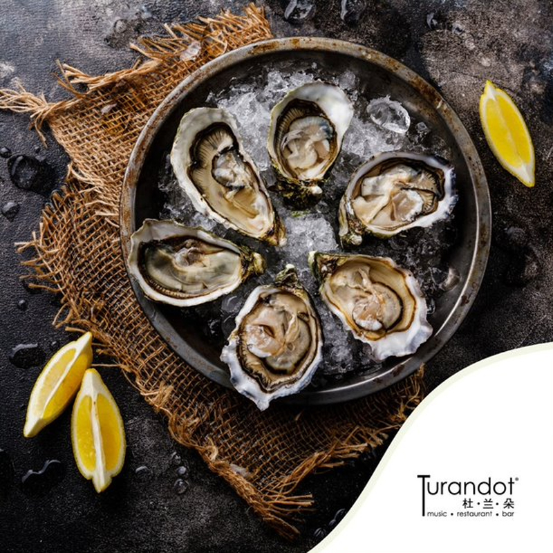 SAFRA Mount Faber - Enjoy fresh and juicy oysters at affordable prices at Turandot